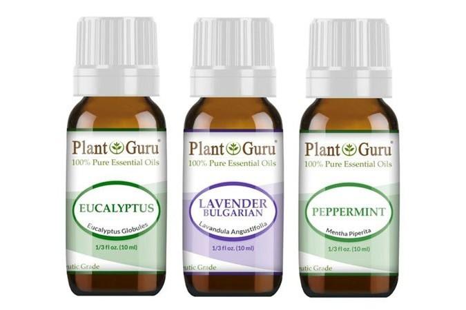 Pleant Guru Essential Oils Review