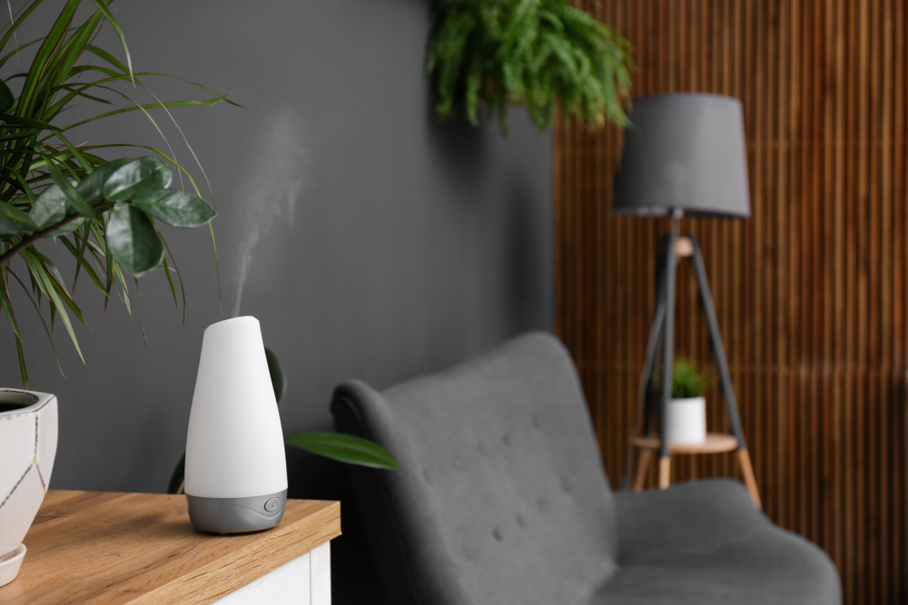 Pros and Cons of a Diffuser